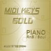 Thumbnail MIDI Keys Gold: Piano RnB Soul