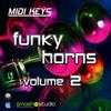 Thumbnail MIDI Keys: Funky Horns 2